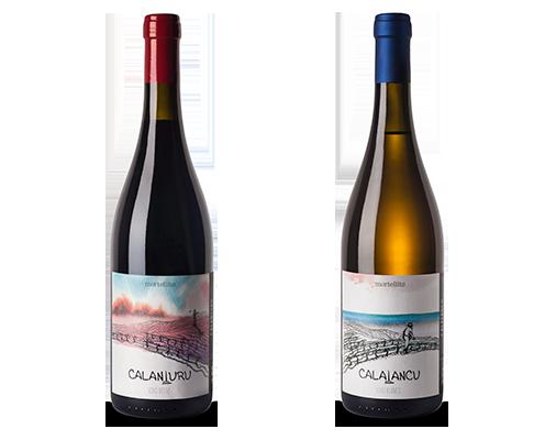 bottiglie_vino_il_mortellito_2png